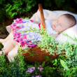 Newborn in the basket — Stock Photo