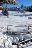 Winter landscape with snow — Stok fotoğraf