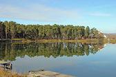 Lake forest yakınındaki — Stok fotoğraf