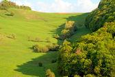 Allgreen mountain — Stock Photo