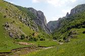 Turda Gorges — Stock Photo