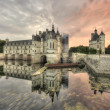 Stock Photo: Chenonceau Castle
