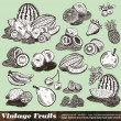 Vintage Fruits Collection - Stock Vector