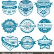Premium Quality and Satisfaction Guarantee labels — Stock Vector
