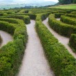 Puzzling Maze — Stock Photo #6757591
