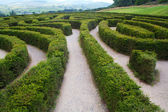 Puzzling Maze — Stock Photo