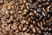 Decaffinated and caffinated coffee beans. — Stock Photo