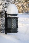 Nevicate in polonia parco lazienkowski. — Foto Stock