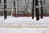 Tram rushing by trees in winter scene. — Stock Photo