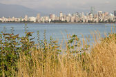 Vancouver BC Downtown from Hasting Mills Park — Stock Photo