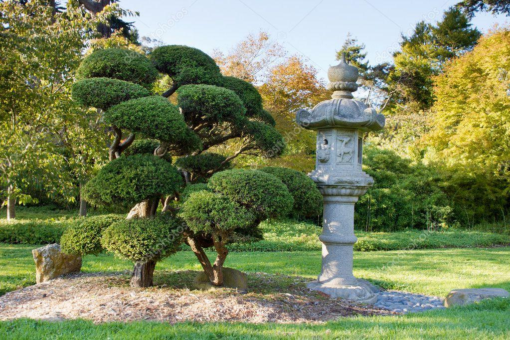 Lanterne De Pierre Et De Bonsa Taill Au Jardin Japonais