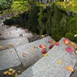 Garden Path Granite Stone Steps — Stock Photo