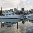 Marina op willamette rivier in portland oregon centrum — Stockfoto