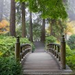 Foggy Morning at Wooden Foot Bridge at Japanese Garden — Stock Photo #7563287
