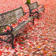 Park Benches in Fall — Foto de stock #7592327