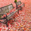 图库照片: Park Benches in Fall