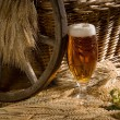 Beer glass — Stockfoto