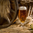 Beer glass - Foto Stock