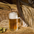 Beer glass — Stock Photo #7090243