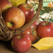 Stock Photo: Red apples