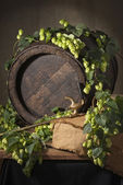 Hop cones with old barrel — Stock Photo