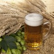 Beer glass — Stock Photo #7351456