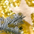 Christmas decoration — Stock Photo #7395817