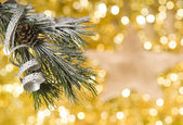 Christmas decoration — Foto Stock