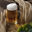 Beer glass — Stock Photo #7673448