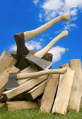 Axe with firewood — Stock Photo