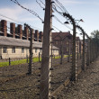 Auschwitz-Birkenau Concentration Camp - Stock Photo