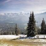 View of Tatra Mountains and Zakopane — Stock Photo