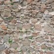 Old stone wall background — Stock Photo #6802961