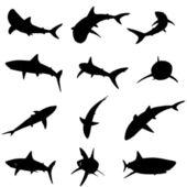Shark silhouettes — Stock Vector