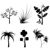 Plants silhouette — Stock Vector