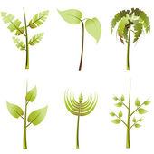 Vector plants set — Stock Vector