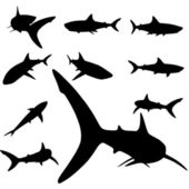 Shark silhouette set — Stock Vector