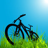 Mountain bike — Stock Vector