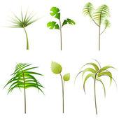 Plants set — Stock Vector