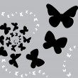Butterfly black s — Stock Vector