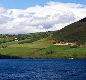 Scotland. Lakeshore landscape — Stock Photo