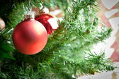 Christmas ornament with tree in background — Stock Photo