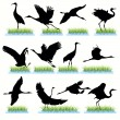 Royalty-Free Stock Vector Image: Cranes Silhouettes Set