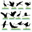 Cranes Silhouettes Set — Stock Vector
