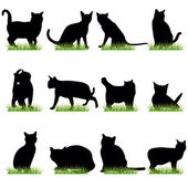 12 Cat Silhouettes Set — Stock Vector
