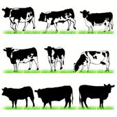 Cows and Bulls Silhouettes Set — Stock Vector