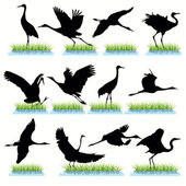 Cranes Silhouettes Set — Stock Vector