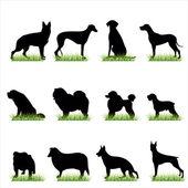 Psy sylwetki zestaw — Wektor stockowy