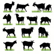 14 Goats silhouettes set - Stock Vector