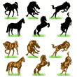 12 Horses Silhouettes Set — Stock Vector